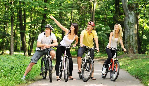 Dineren en fietsen in het bos bij Amersfoort (vanaf 2 nachten)