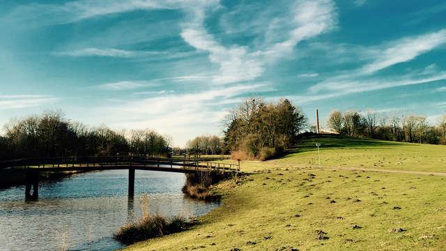 Découvrez Hengelo et la nature au cœur de Twente