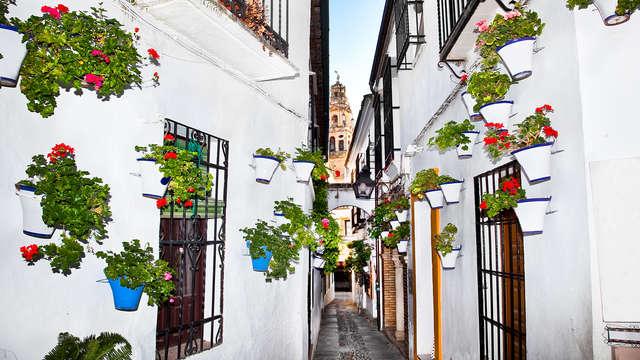 Viaja a Córdoba y enamórate de sus hermosas calles