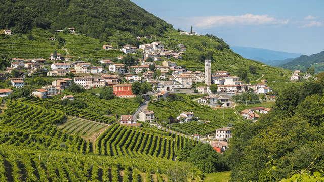 Descubre las colinas de Asolo con una visita y degustación en una bodega en Valdobbiadene