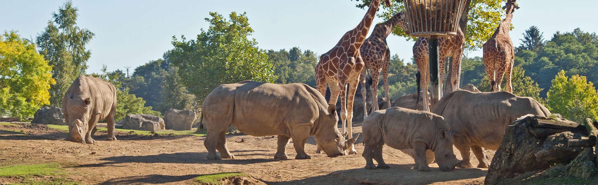 Escapade bien être à Orléans avec entrées au ZooParc de Beauval (à partir de 2 nuits)