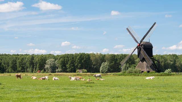 Verken de Brabantse natuur tijdens een paar dagen weg