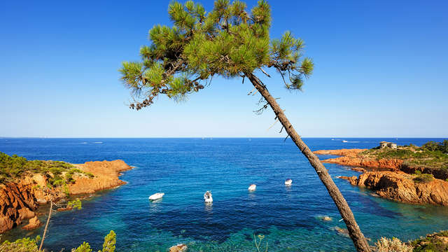 Coralia By Vacanceole Residence Carre Marine