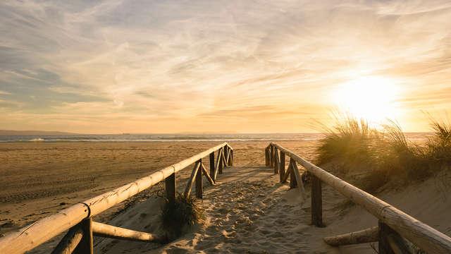 City special: genieten aan het strand van Scheveningen en bezoek Madurodam