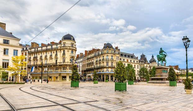 Punto de partida ideal para descubrir Orléans
