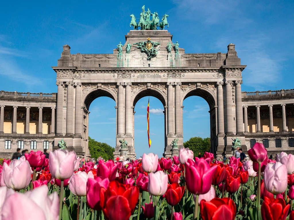 Séjour Belgique - City trip à la découverte de Bruxelles et de sa diversité  - 3*