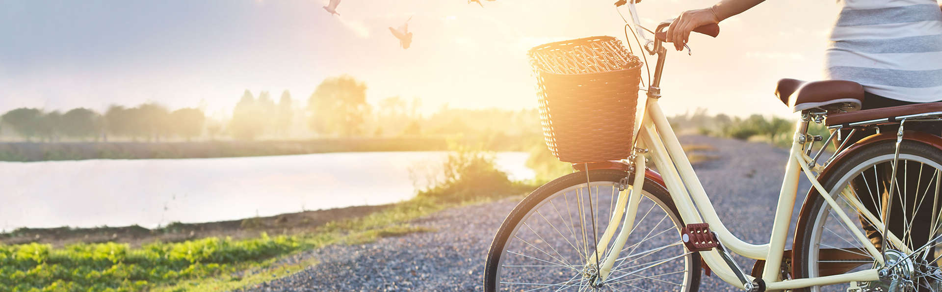 Pasea en bicicleta por el bosque de Roermond (desde 2 noches)