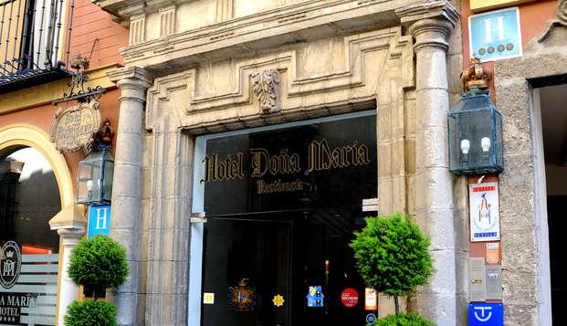 Hotel Dona Maria - N ENTRANCE