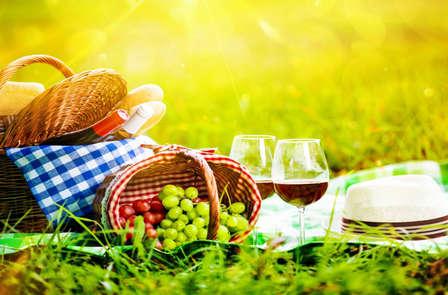 Pausa rurale con cesta da picnic inclusa vicino Granada