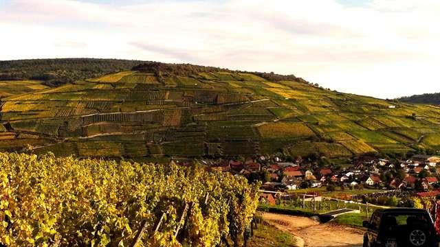 Découverte gourmande et culturelle de l'Alsace (à partir de 2 nuits)