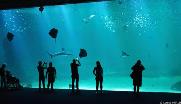 Week-end détente et découverte avec entrée à l'Aquarium Nausicaa