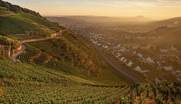 Breng een moment door in het kuuroord Bad Neuenahr in een Duitse wijnvallei