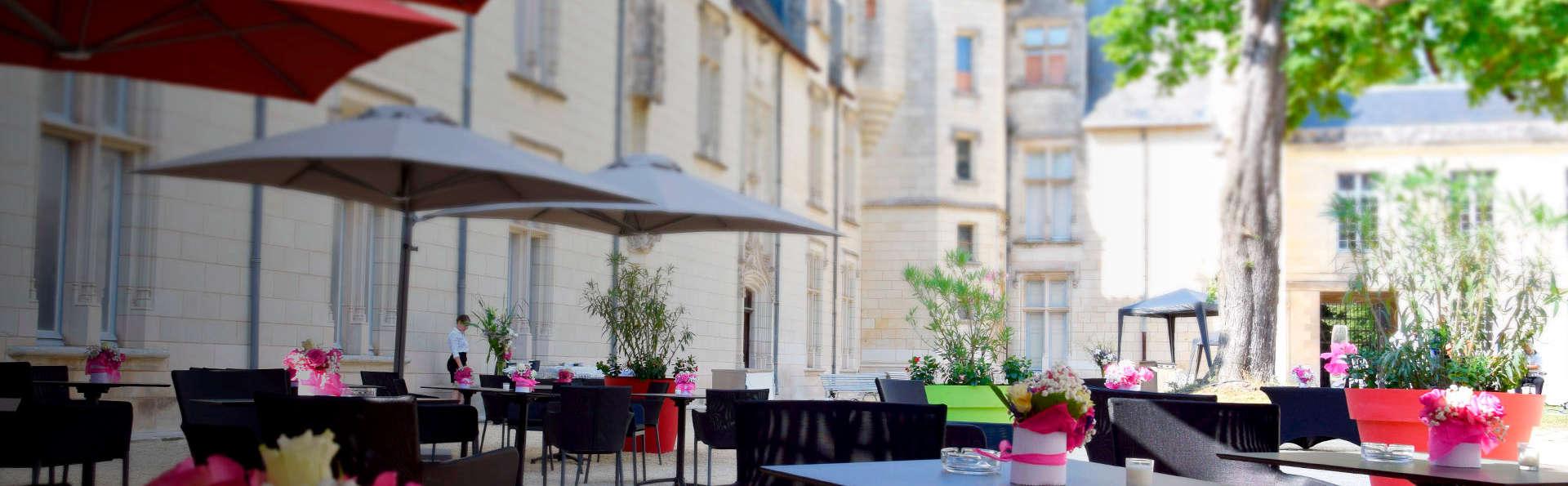 Séjour idyllique dans un superbe château près de Poitiers