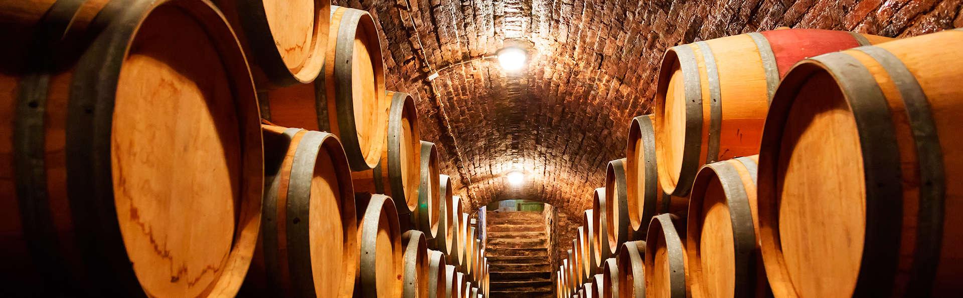 Descubre Aranda con visita a bodega D.O Ribera del Duero y degustación de sus vinos