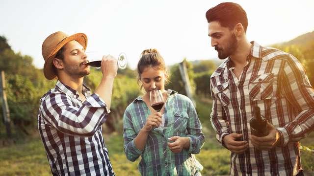Visita e degustazione di vini nella campagna di Verona