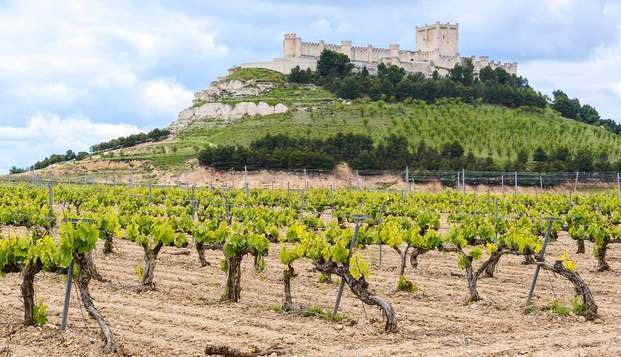 Escapada entre viñedos con cata de vino Ribera del Duero