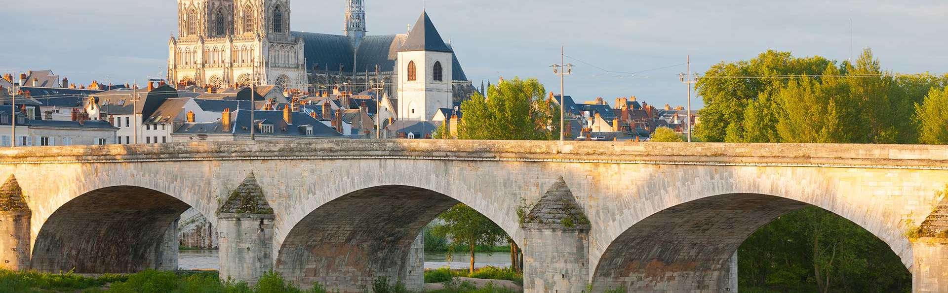 Novotel Orléans Saint-Jean-de-Braye - EDIT_DESTINATION_03.jpg