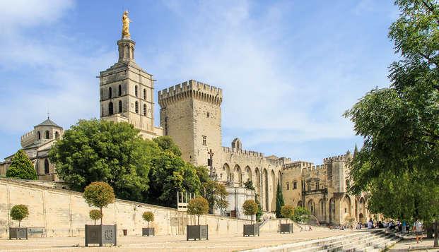 Mercure Pont d Avignon Centre - Avignon