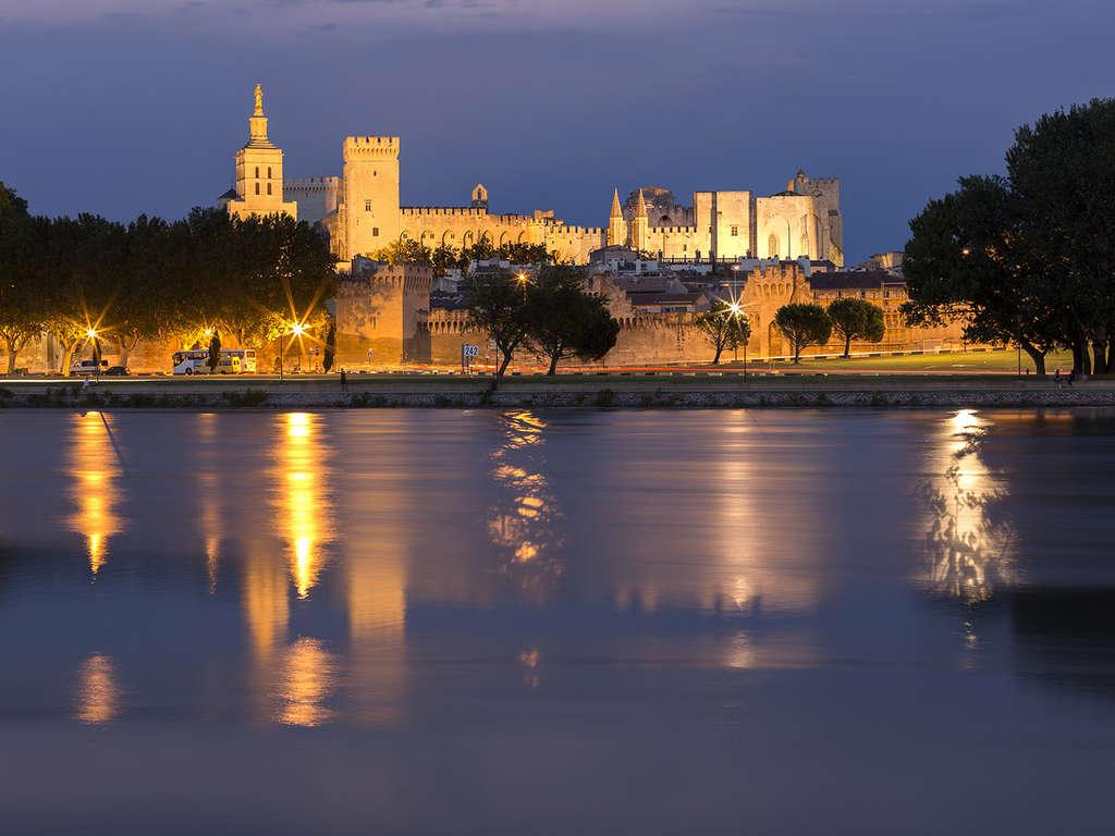 Découverte d'Avignon avec entrée au Palais des Papes 4* - 1