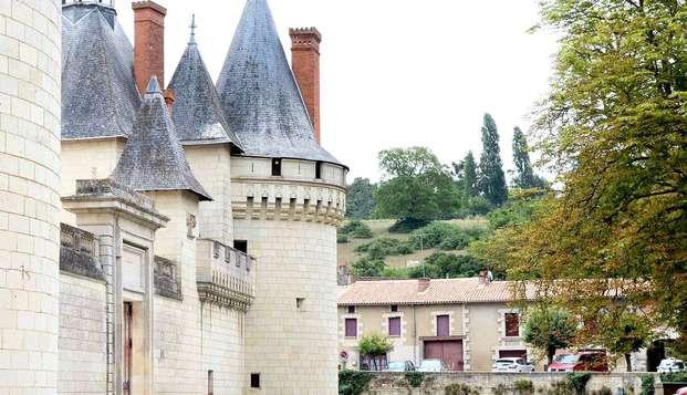 Chateau de Dissay - NEW FRONT