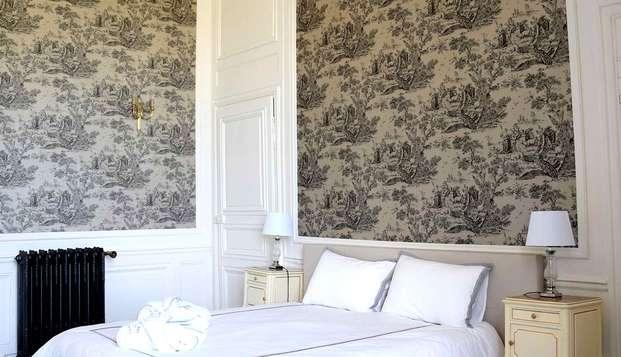 Chateau de Dissay - NEW ROOM