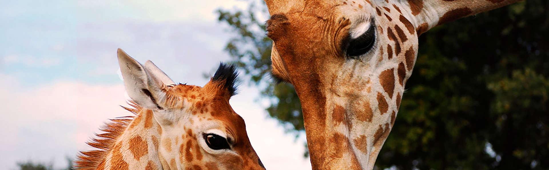 Week-end en famille à Cavaillon avec entrée au zoo de la Barben