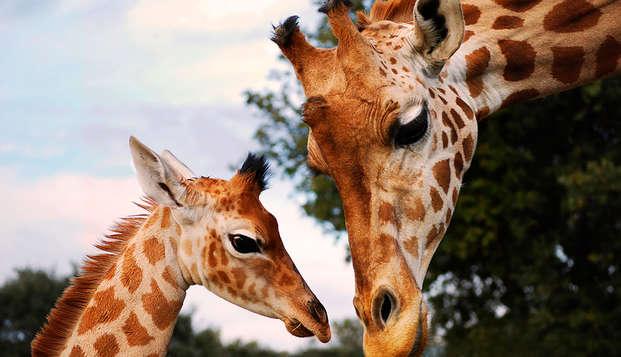 Descubre animales de todo el mundo en el zoo de la Barben