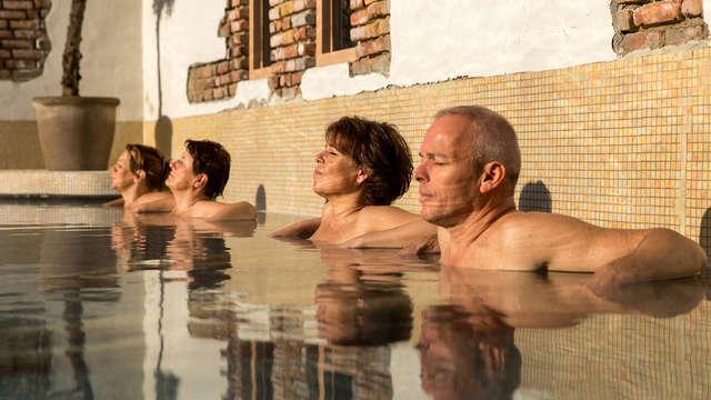Luxe, confort et bien-être dans la Veluwe (à partir de 2 nuits)