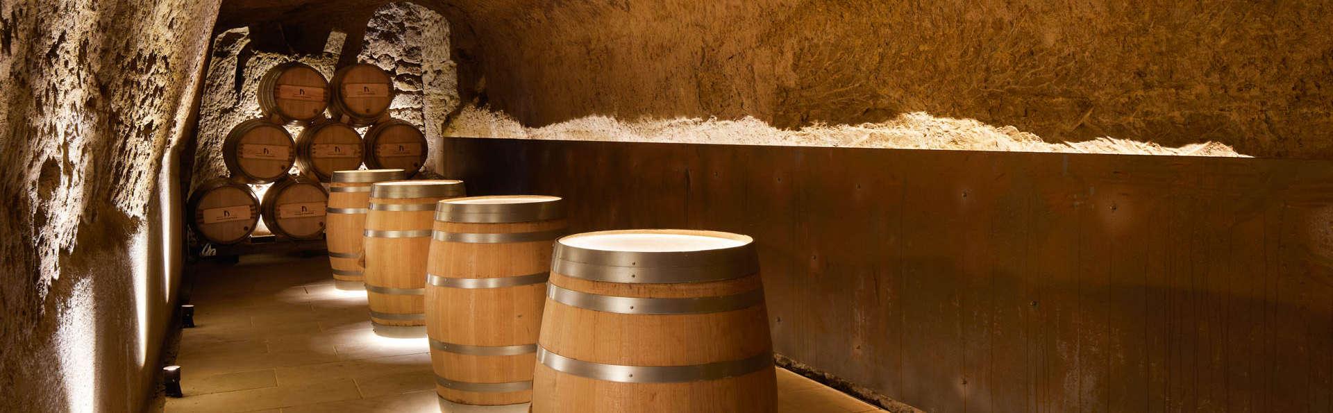 Visita a bodega, degustación de vinos y cena gastronómica en un exclusivo palacio (desde 2 noches)