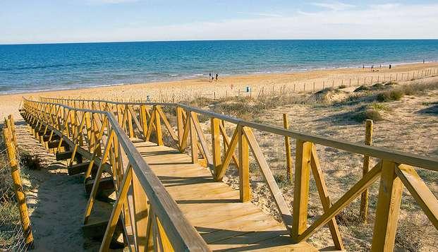 Escápate a pie de playa en Guardamar del Segura