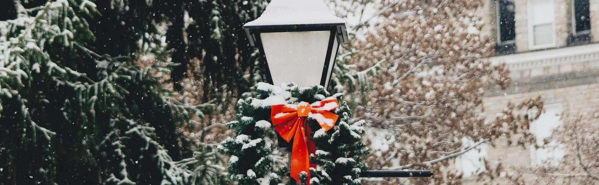 Entrez dans la magie de Noël en famille ! (6 pers max)