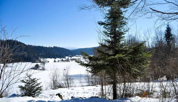 Les Chalets de Tremontagne - N VIEW