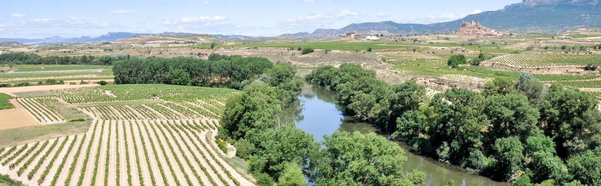 Elegancia Ecológica en Palacio: cena degustación, paseo por viñedos y cata de vino Rioja