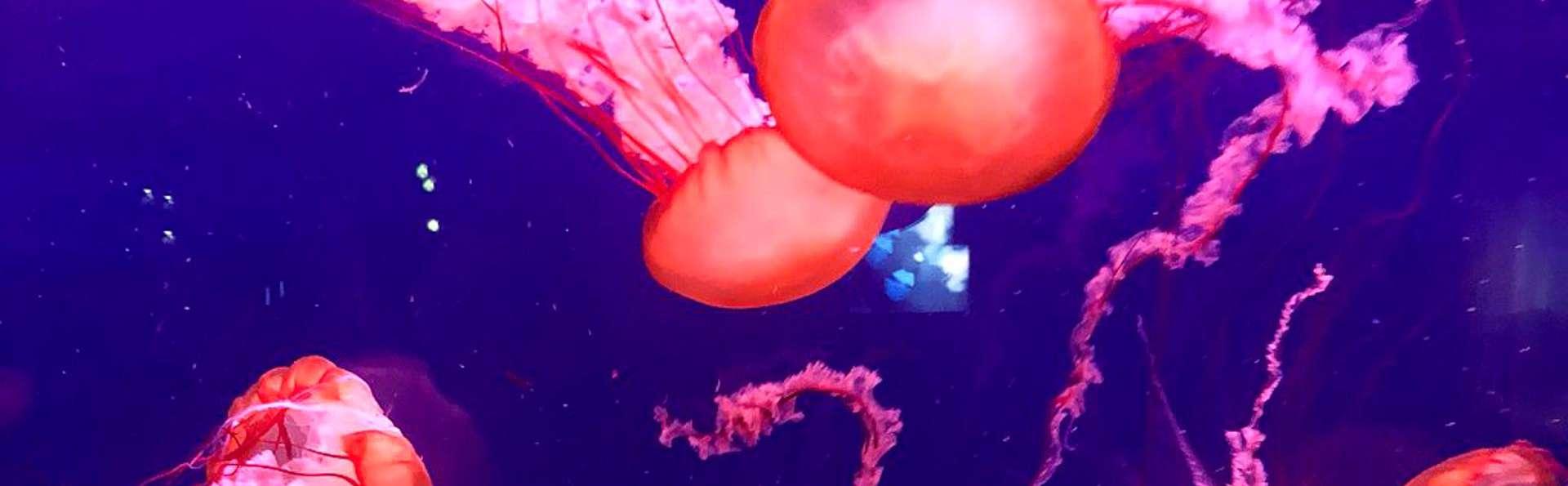 Découvrez Paris et son Aquarium le temps d'un weekend !