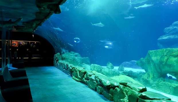 Weekend à deux pas des Champs Elysées et découverte de l'Aquarium de Paris
