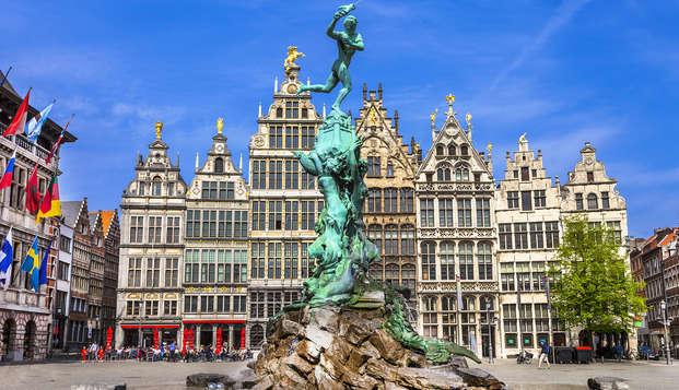 Speciale zomerpromo om Antwerpen te ontdekken in een citytrip (vanaf 2 nachten)