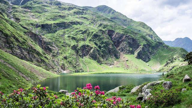 Mise au vert au cœur de Bagnères-de-Luchon