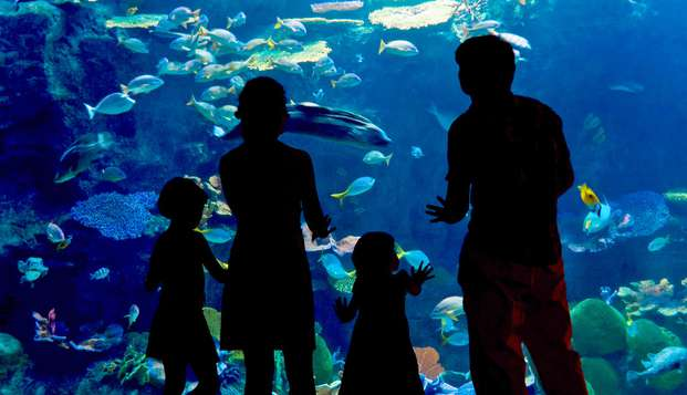 Especial familias: Escapada con entradas al Acuario de Zaragoza en habitación triple