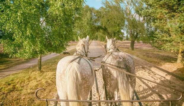 Escapada con paseo en carroza de caballos entre las viñas del Penedès (desde 2 noches)