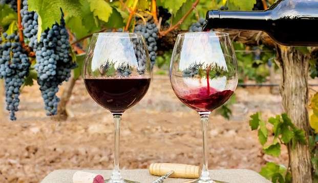 Oferta Semanal : cata de vino y pincho con hotel 4* en Ciudad real