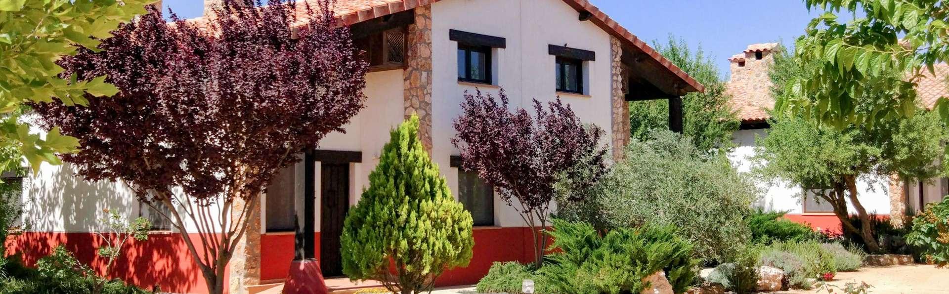 Escapada en una villa privada con chimenea y degustación enológica en La Mancha