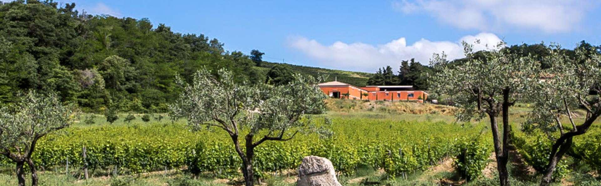Visite d'un domaine viticole et séjour de charme à Orange