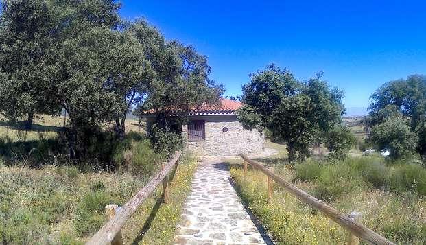 Escapada rural en una cabaña con botella de cava, fruta y vistas a la Sierra de Gredos