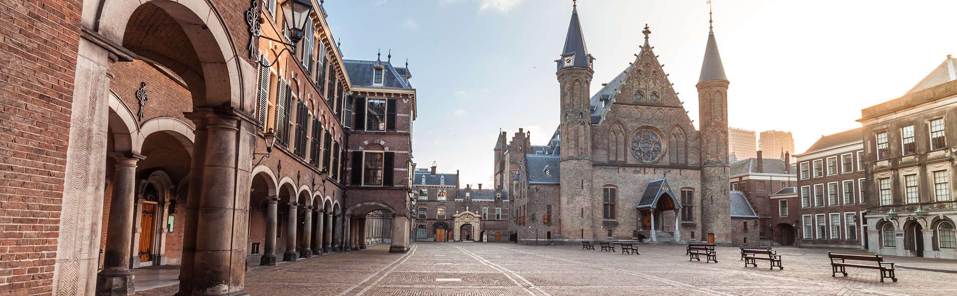 Profitez d'un confort ultime et découvrez les secrets de La Haye