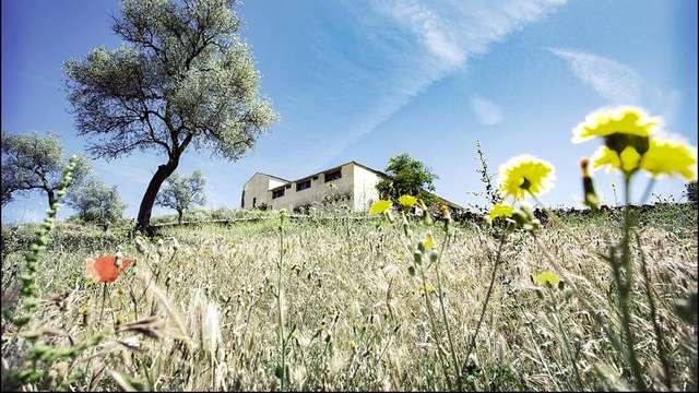Turismo rural inmerso en la naturaleza de Badajoz