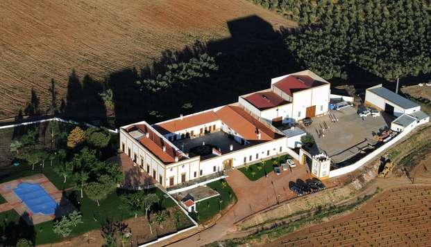 Turismo enológico al sur de Badajoz