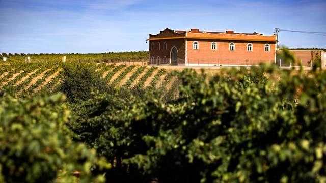 Enología y Gastronomía en Tierra de Barros con visita a Bodega y Cena