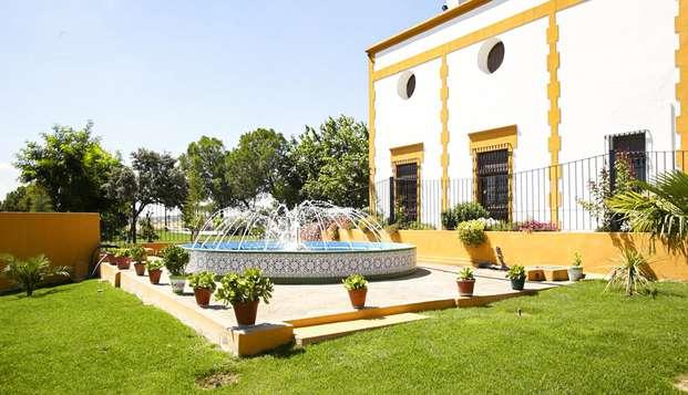 Descubre la tradición vinícola a 45 minutos de Mérida