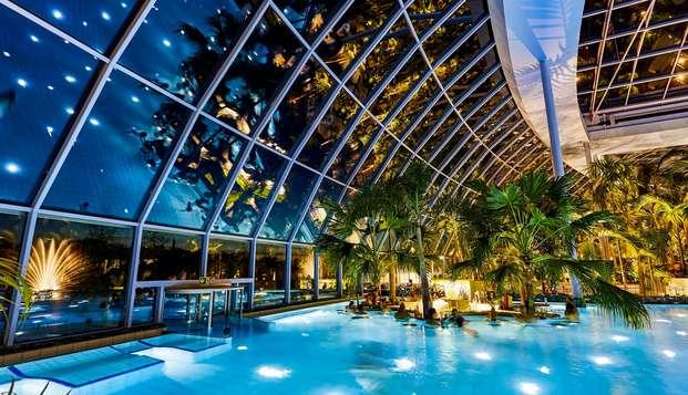 Mijn vakantieparadijs onder de palmen