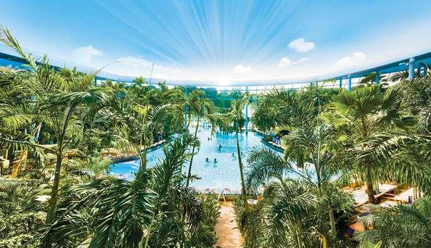 Kom tot rust in een vakantieparadijs onder de palmen (vanaf 2 nachten)